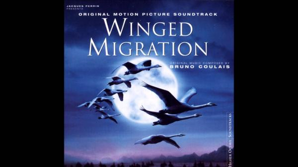 preview Winged Migration