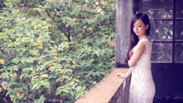 preview Xǔ Ruì Yú
