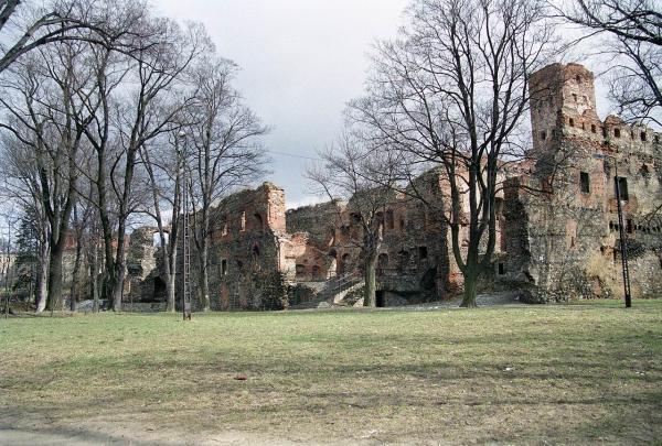 preview Zabkowice Slaskie Castle